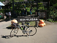 2014_08190012_2
