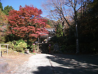2014_11190018