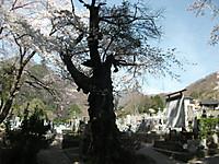 2015_04180074