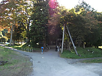 2015_10150224