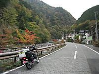 2015_10230048